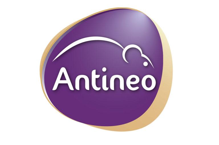 antineo 768x511
